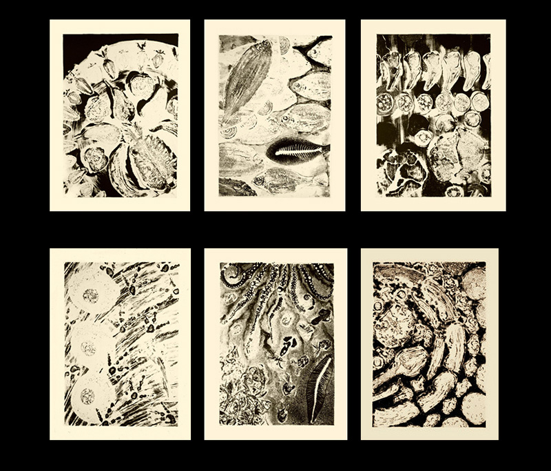 nat-03 Food Prints. 1997, 66 x 54 cm each, lithographs, edition of 15.