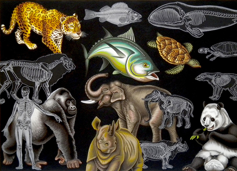 nat-07 Endangered Animals. 2010, 40 x 56 cm, gouache and collage on paper.