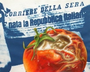 Tomato Republic. 2012, 28 x 35 cm, cyanotype print, watercolour and gouache on paper.