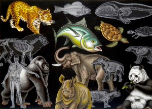 Endangered Animals. 2010, 40 x 56 cm, gouache and collage on paper.
